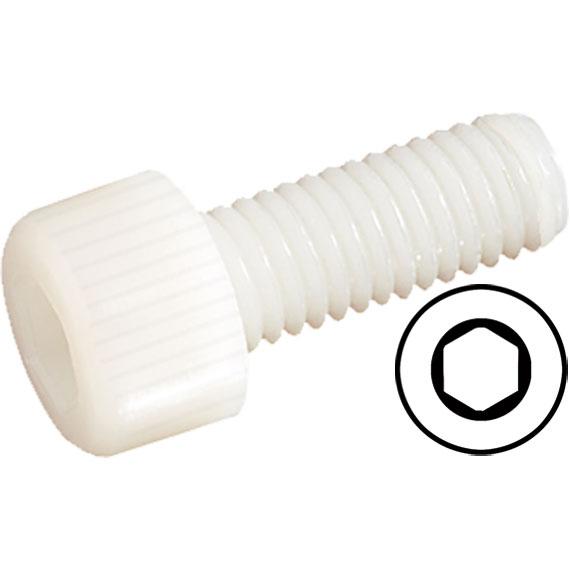 ROBBE SCREW HEAXGON SOCKET PLASTIC M4X25MM 10 PIECES