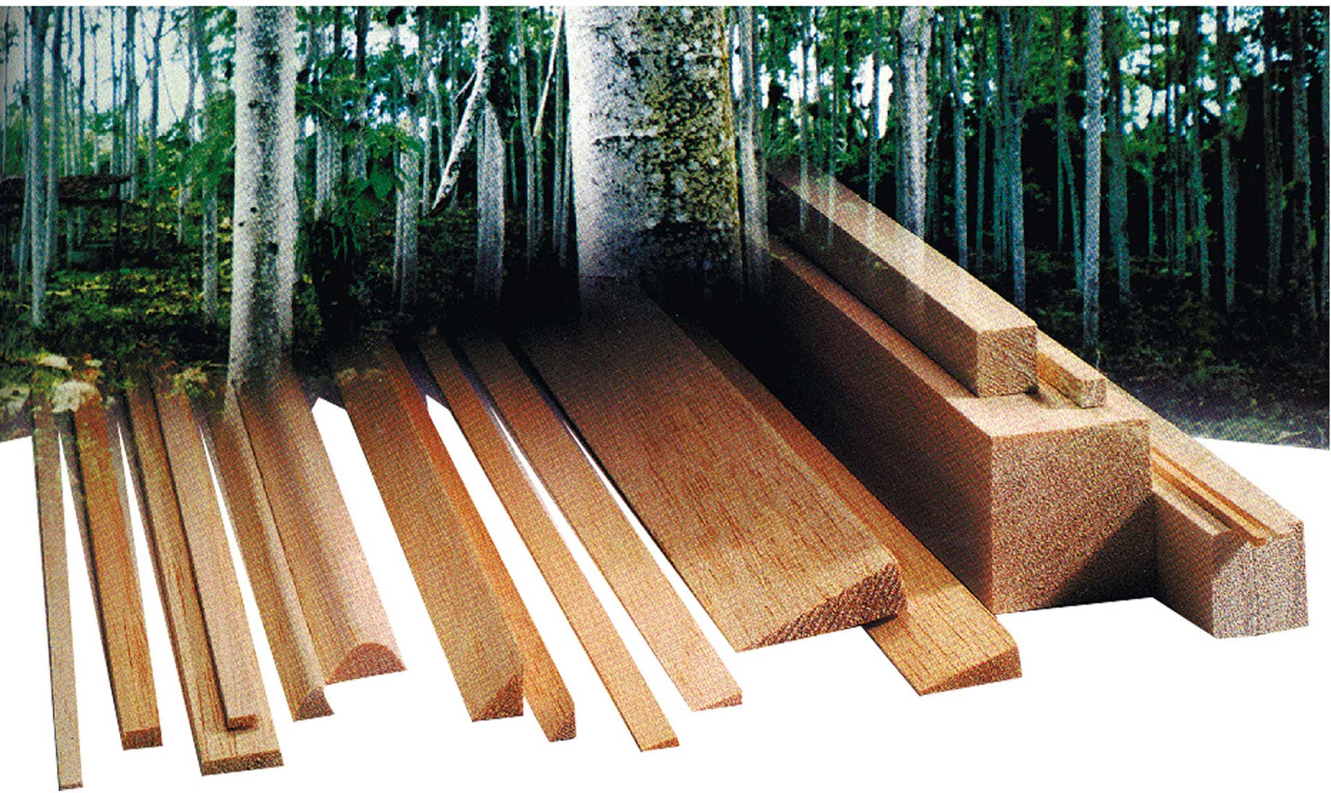 AIGNER BALSA PINE BAR 3/10MM/1M